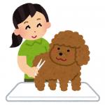 菊池亮(トリマー)マツコも感嘆!店舗・セミナーは?大型犬OK?